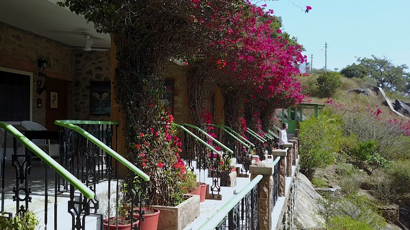 Connaught House Mount Abu Rajasthan heritage hotel photo of terrace bungalows and flowers